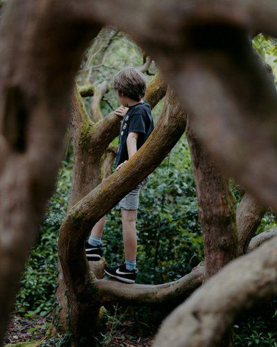 jongen klimt in bos